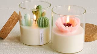 These Terrarium Candles Are Perfect For Plant Mums