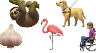 Apple Has Released New Emojis For World Emoji Day Including A Bulb Of Garlic And An Adorable Sloth