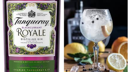 Tanqueray Launches New Blackcurrant Royale Flavoured Gin