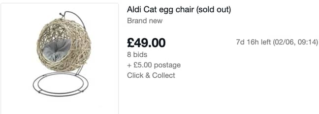 People are bidding on the cat-sized egg chair after it sold out on Aldi's website (Credit: eBay)