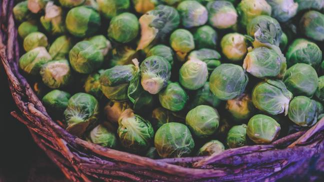 Time to perk up your sprouts (Credit: Unsplash)