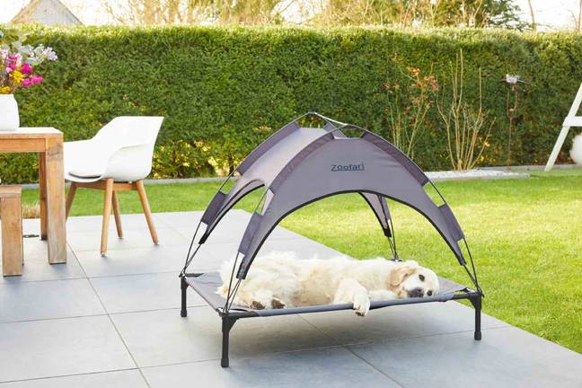 The Lidl pet sun bed is ideal for the hot weather (Credit: Lidl)