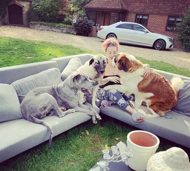 Sheridan is a massive dog lover herself (Credit: Instagram/ Sheridan Smith)