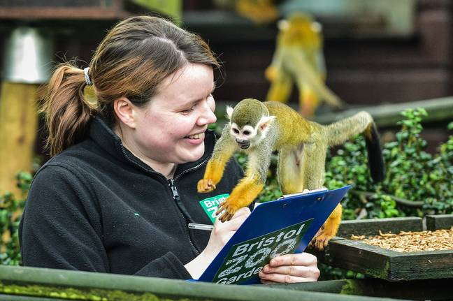 Bristol Zoo have been unable to access the Zoo Animals Fund (Credit: PA)