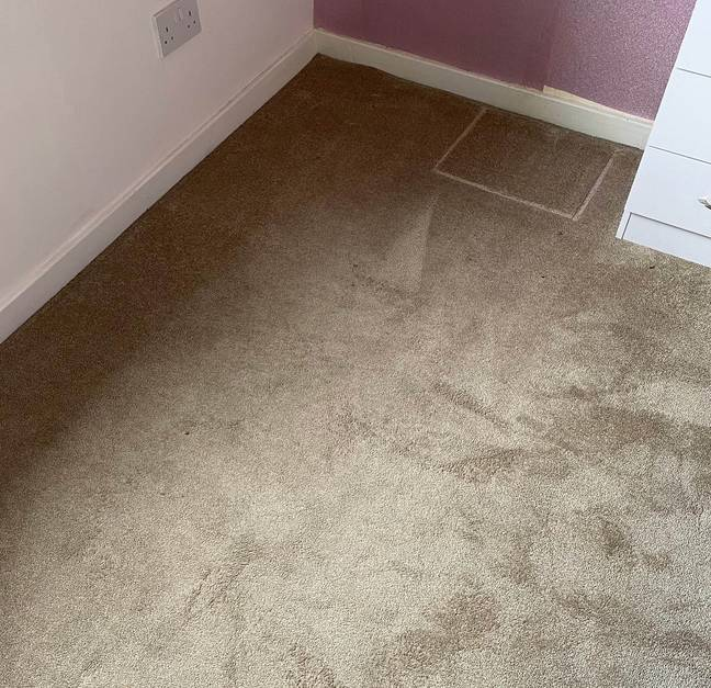 What the stained cream carpet looked like beforehand (Credit: Caters)