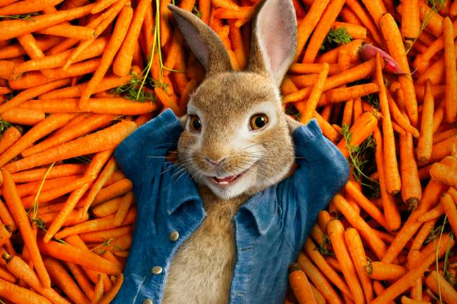 The 'Peter Rabbit' sequel has reportedly had its release date pushed back due to coronavirus (Credit: Sony)