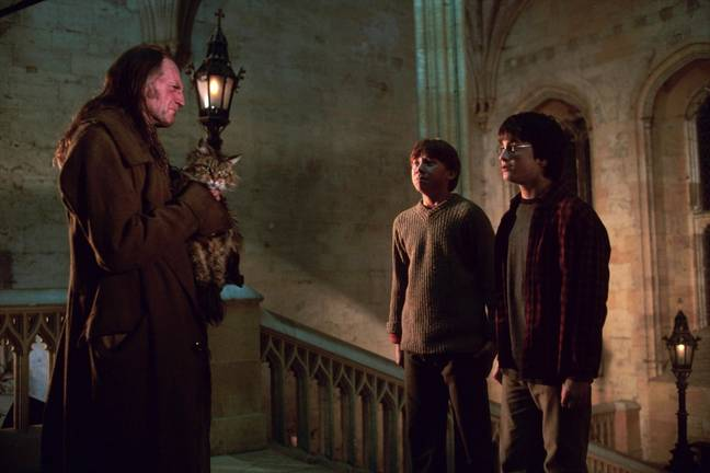 Filch regularly catches Harry and Ron breaking the rules (Credit: Warner Bros)