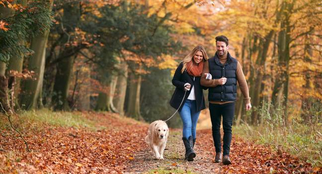 Others have been going on fewer walks (Credit: Shutterstock)