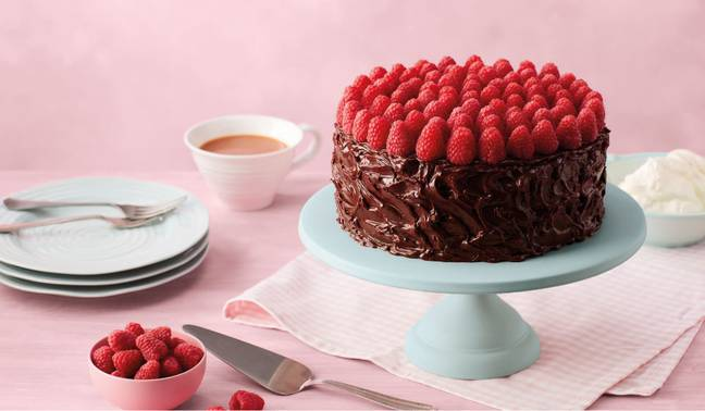 Bakers were sent out ingredients for this raspberry-topped, fudgy chocolate cake in February (Credit: Bake Off Box)