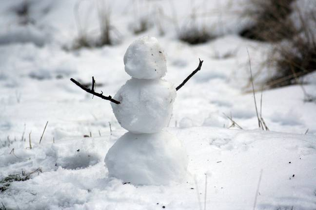 Will you be building a snowman this year (Credit: Unsplash)