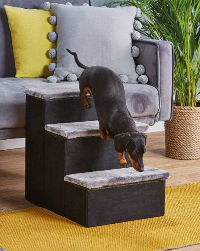 Aldi recently launched a set of mini stairs to help your pet reach the sofa (Credit: Aldi)