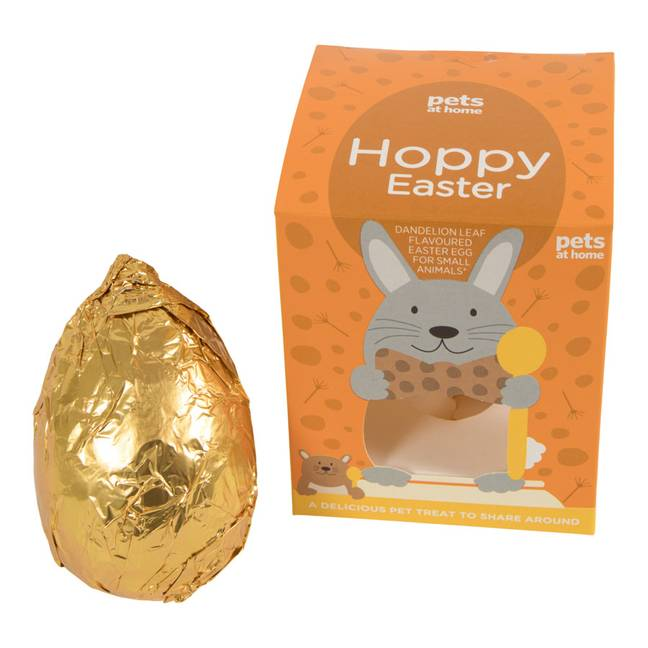The Easter bunny should also get their own Easter egg (Credit: Pets at Home)