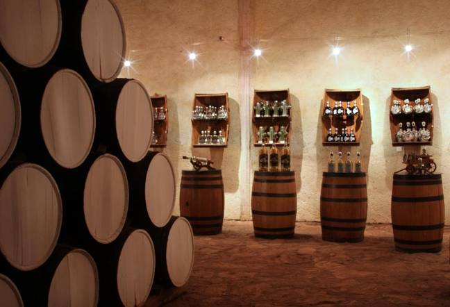 Guests can go on tequila tasting tours (Credit: Matices Hotel de Barricas)