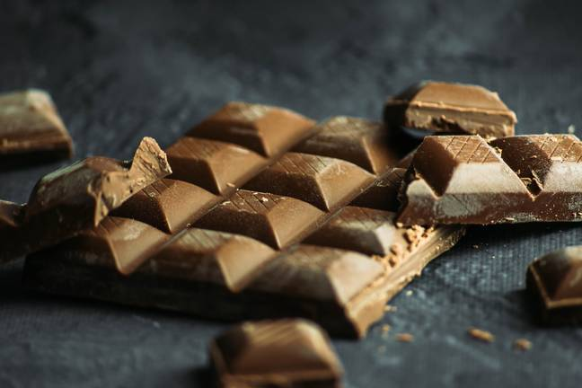 Chocolate can be poisonous for both dogs and cats (Credit: Unsplash)