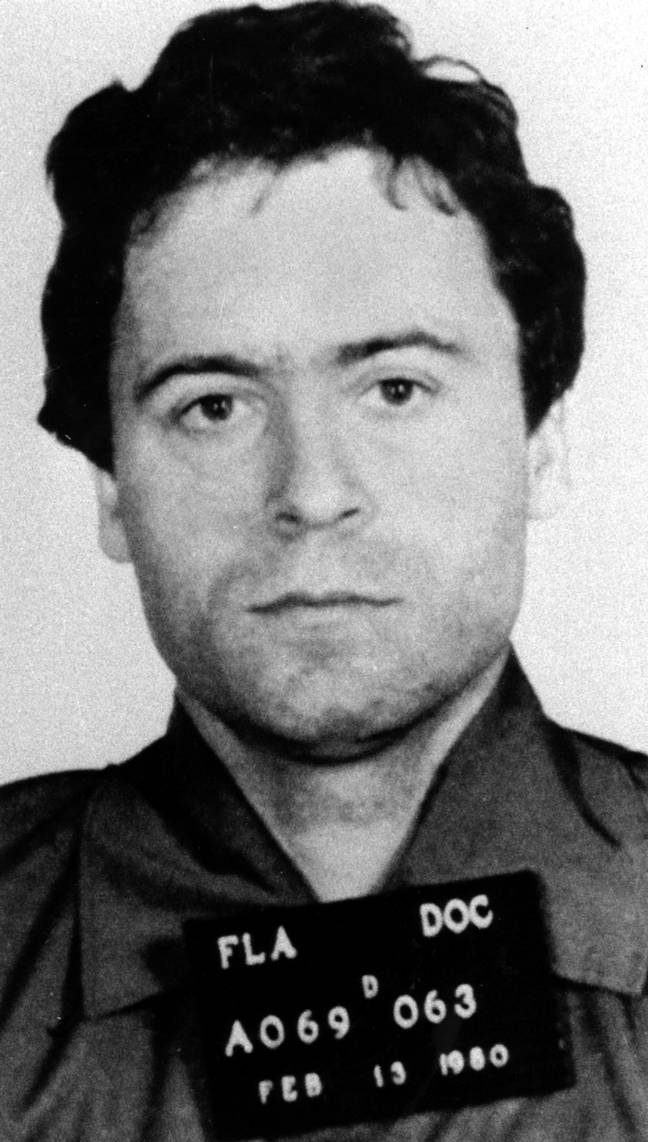 Other shows in the series include The Hunt For Ted Bundy (Credit: Netflix)