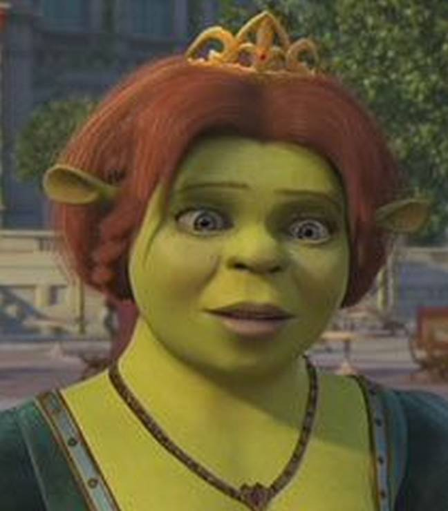 Princess Fiona is a green ogre in the movie Shrek (Credit: Dreamworks)
