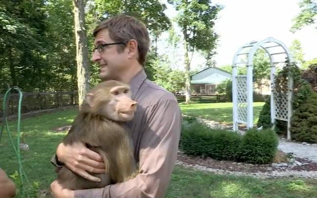Louis is handed Tatiana the baboon to hold (Credit: BBC)
