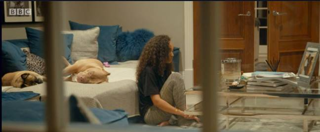 Leigh-Anne Pinnock's dogs can be seen in the documentary (Credit: BBC)