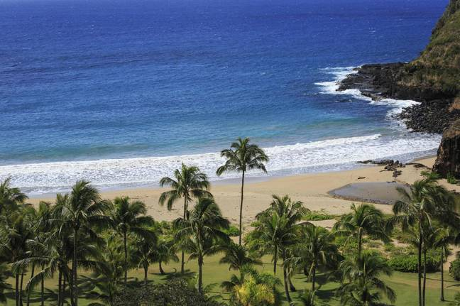 Hawaii is one of the most-anticipated Disney destinations (Credit: PA)