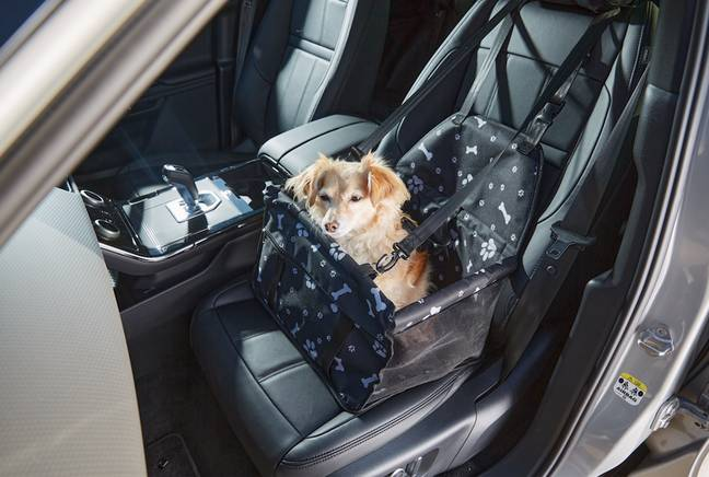 There's also a new car seat for travelling (Credit: Aldi)