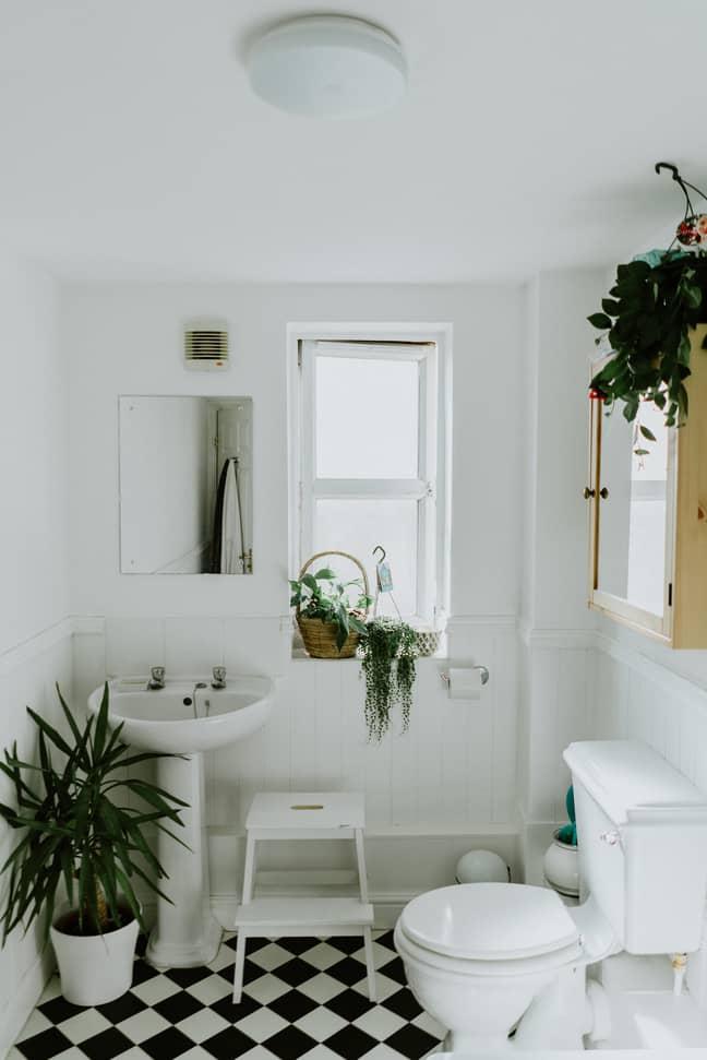 Goodbye splashes and stains, hello sparkling clean bathroom! (Credit: Unsplash)