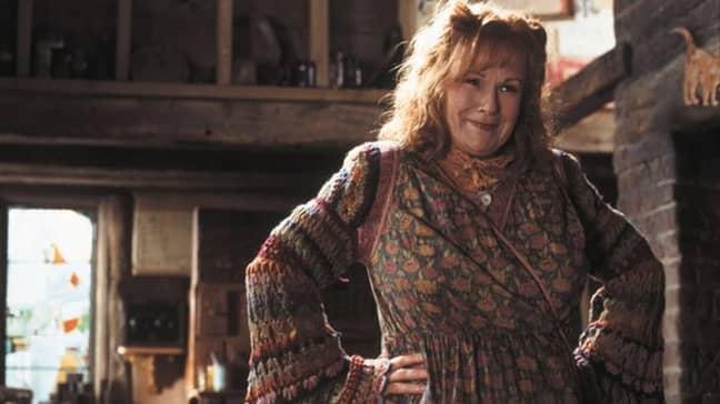 Dame Julie played Molly Weasley in 'Harry Potter' (Credit: Warner Bros)