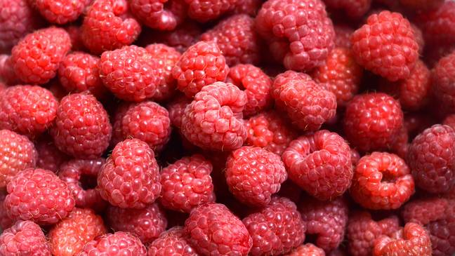The raspberry flavours have been mixed in with vodka (Credit: Unsplash)
