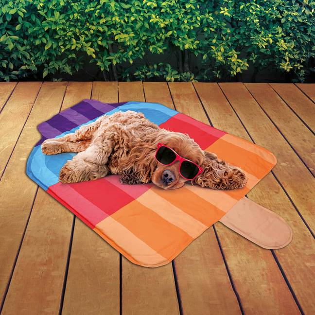 B&M's cooling mats could help keep the dogs cool (Credit: B&M)