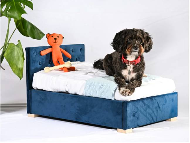The 'Store & Snore Plush Velvet Navy Doggy Ottoman' (Credit: Time4Sleep)