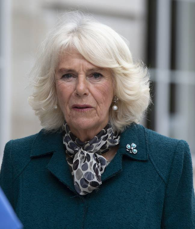 Camilla, Duchess of Cornwall, has been subject to some upsetting online abuse from viewers who watched the show (Credit: PA)
