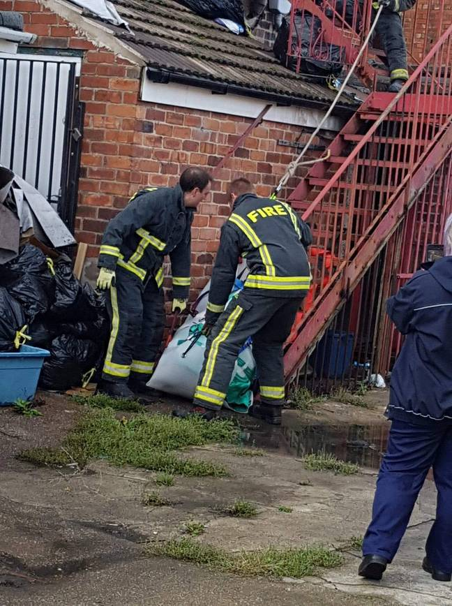 Firefighters were drafted in by the RSPCA to help rescue the pig so it could be rehomed (Credit: SWNS)