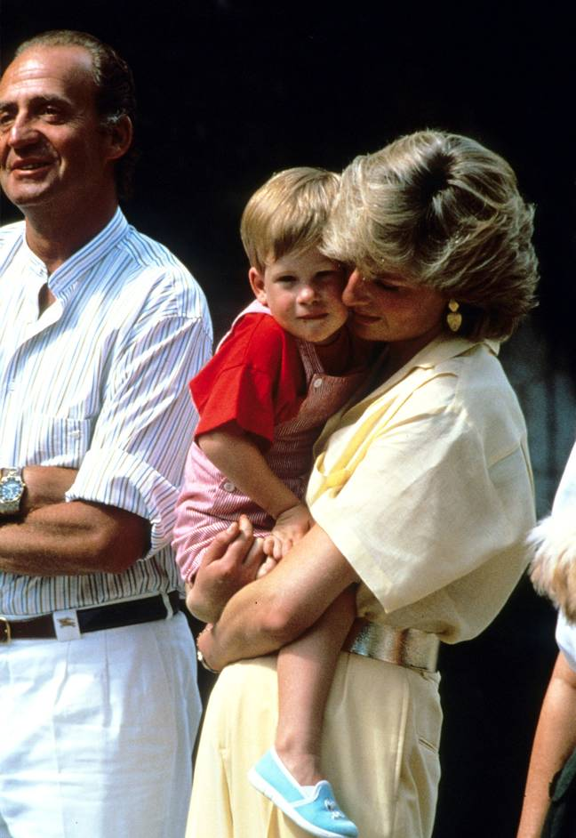 Princess Diana died in 1997 and specified her sons would each receive £10 million (Credit: PA)