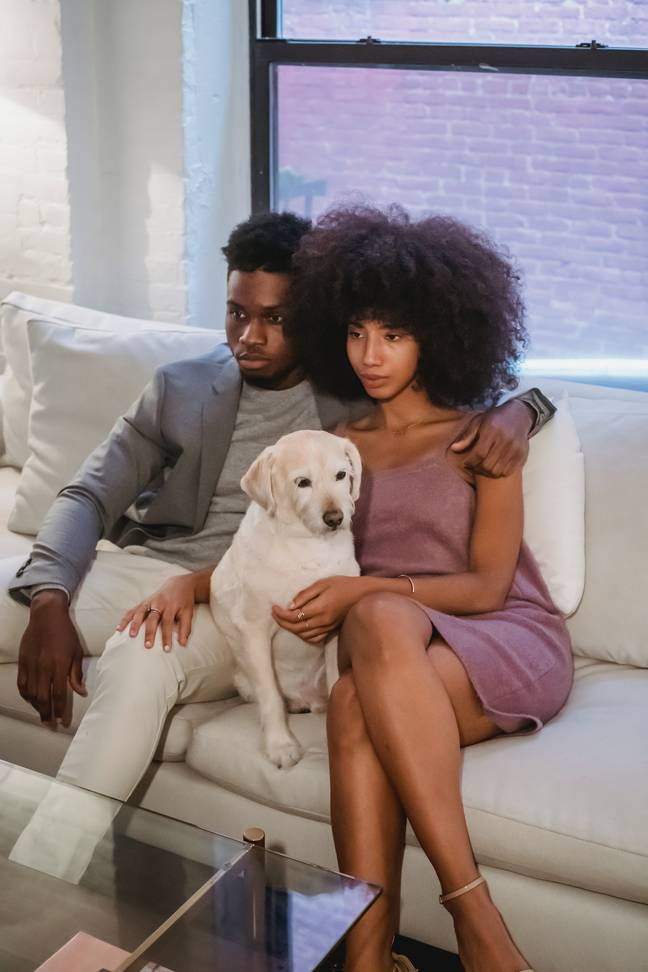 Pets may lead to contention if couples choose to split (Credit: Unsplash)