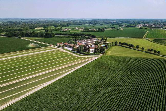 The vineyard sits on a whopping 266.9 acres of land (Credit: Romolini)