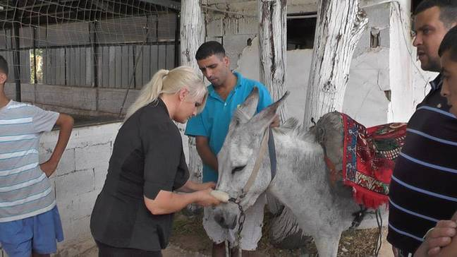 Lucy now lives in Israel running the sanctuary (Credit: Caters)