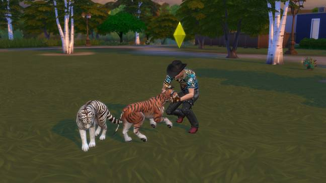 Kari even created 'tigers' for Joe, simply giving dogs tiger stripes (Credit: Kari Nicole Mckendrick/EA)