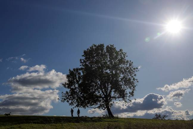 Temperatures have soared to 37 degrees celsius this week (Credit: PA)
