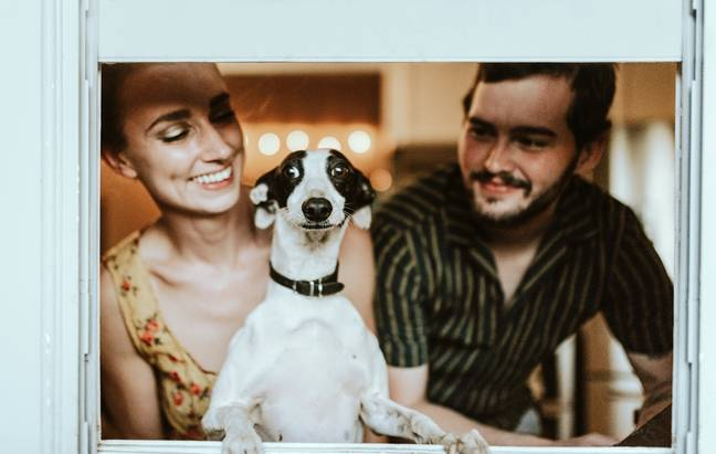 Many couples fight over who gets to keep the dog (Credit: Unsplash)