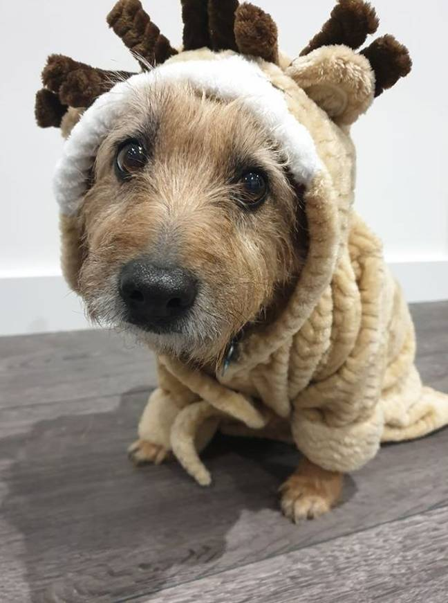 12-year-old Alfie doesn't mind wearing the dressing gown, even though his face says different (Credit: Christina Thygesen)