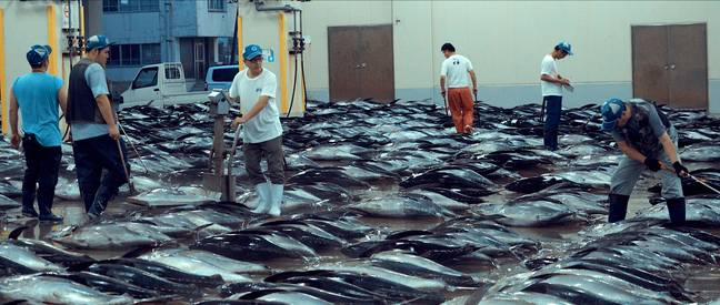 Others challenged the doc's claims about sustainable fishing (Credit: Netflix)