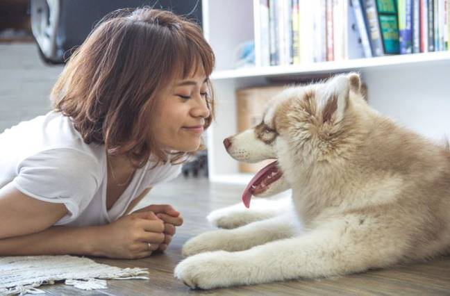 The study suggested dogs provide an unconditional friendship. Credit: Pexels
