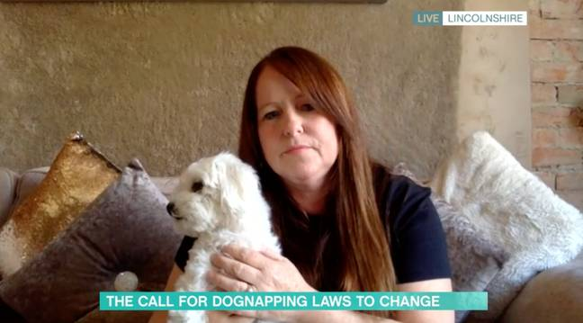 Nicola's beloved two-year-old pooch Mabel was stolen from the garden (Credit: ITV)