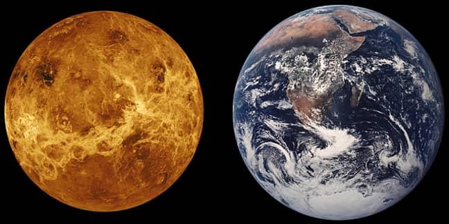 Venus is in Aries until 4th March (Credit: Pixabay)