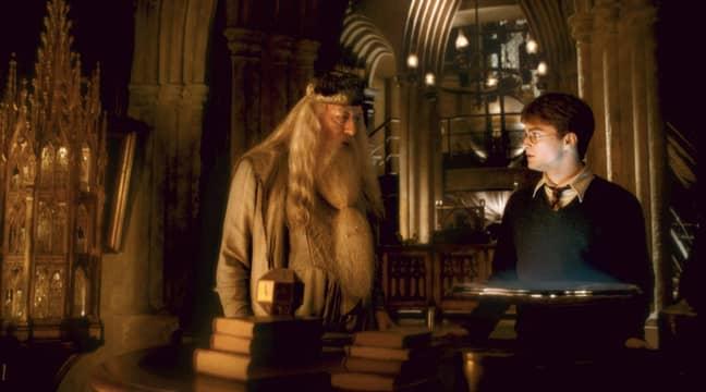 Dumbledore may not be too impressed (Credit: Warner Bros.)