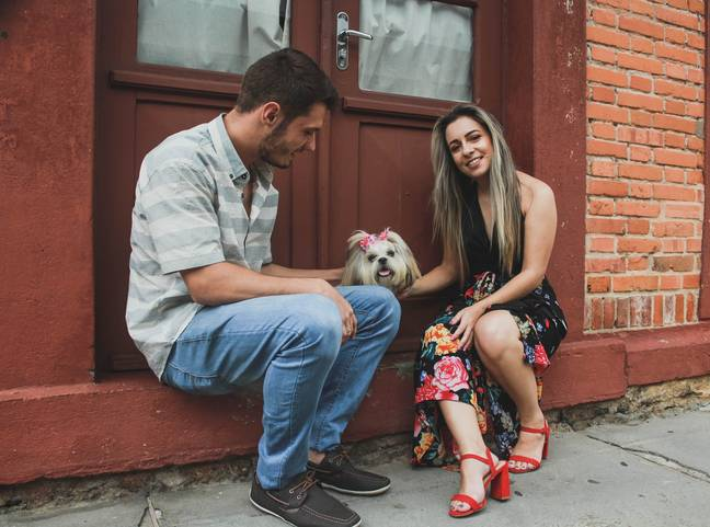 43 per cent of couples said they become more attracted to their partners since getting a dog (Credit: Pexels)