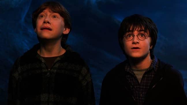The spider was likened to Harry Potter's Aragog (Credit: Harry Potter/Warner Bros)
