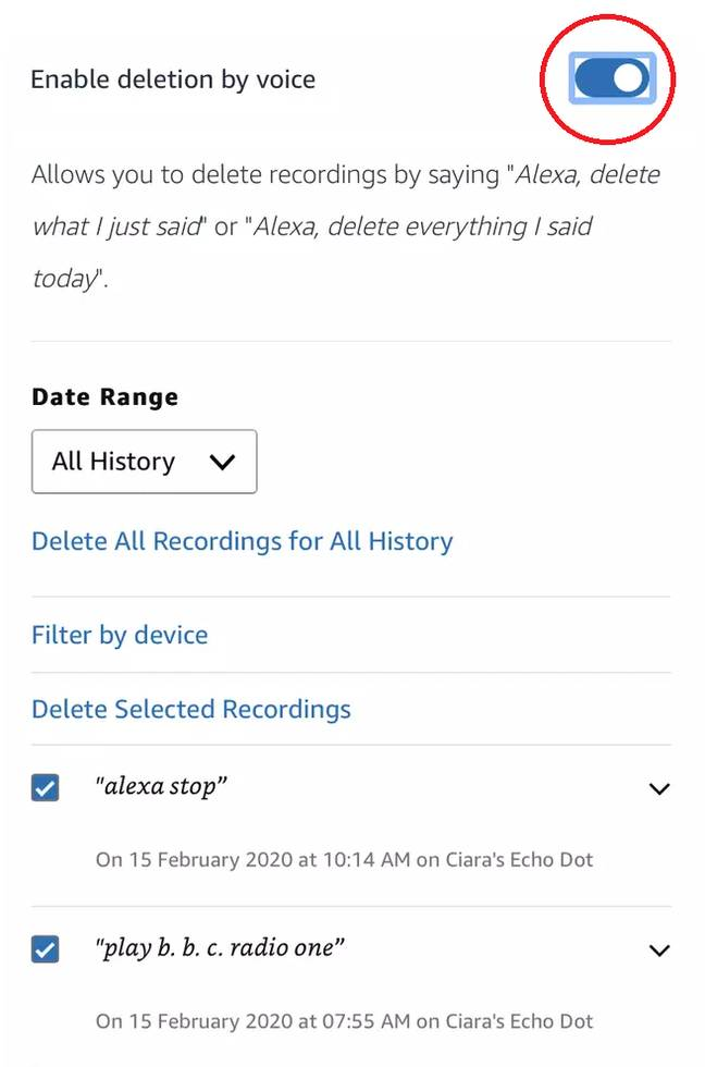 Not many know you can enable voice deletion on your device (Credit: Tyla/Amazon)