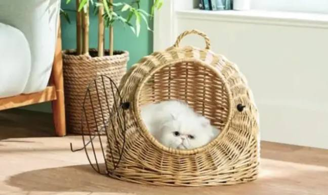 Alongside the egg chair, a cat igloo was also available (Credit: Aldi)