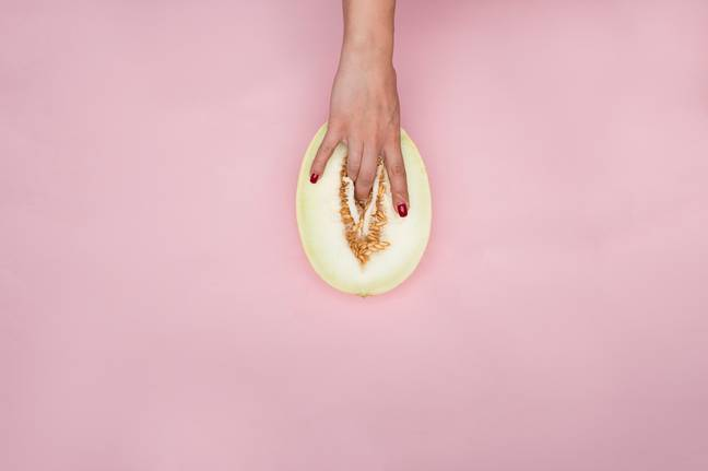 Jody urges those with vulvas to accept the way it looks is normal (Credit: Unsplash)