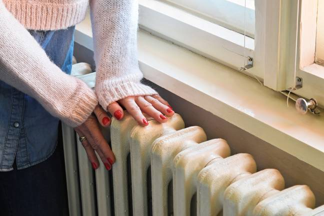 Your central heating could also be to blame (Credit: Shutterstock)